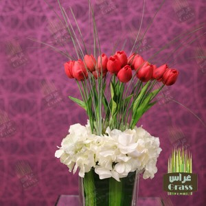 Dutch red tulips and white hydrangea